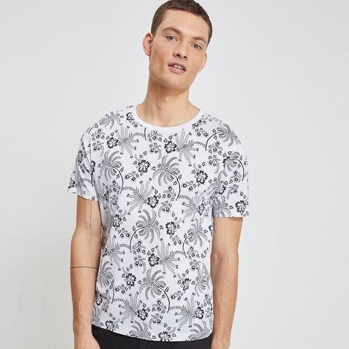 Camiseta-Para-Hombre-Neliflor-Celio