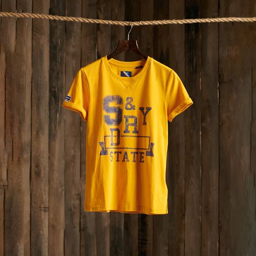 camiseta-para-mujer-t-f-classic-tee-superdry
